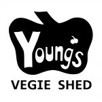 Youngs Vegie Shed